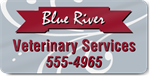 Veterinary Services Magnet