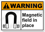 Magnetic Field In Place2 Warning Signs